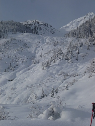 Ski tour the Connaught Slide Path at rogers pass