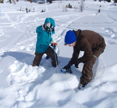 Avalanche safety skills with Cirrus Alpine Guides